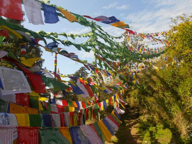Drapeaux de prieres a Dharamsala
