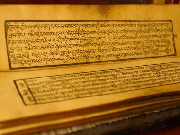 Enseignements du Dalai Lama a Dharamsala