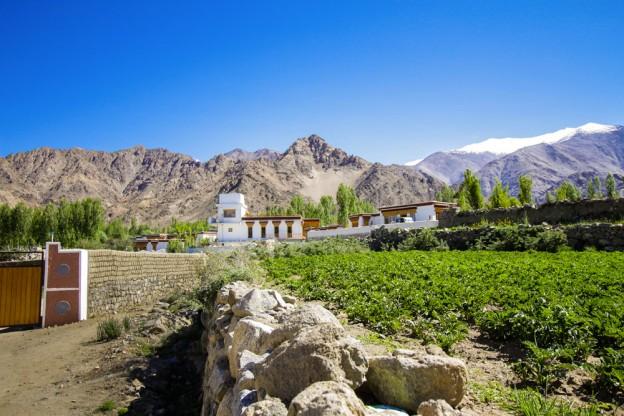 village-saboo.ladakh