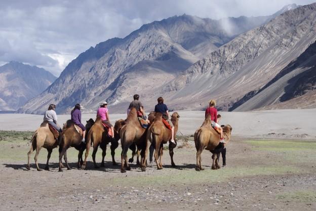 Voyage Ladakh by Omalaya