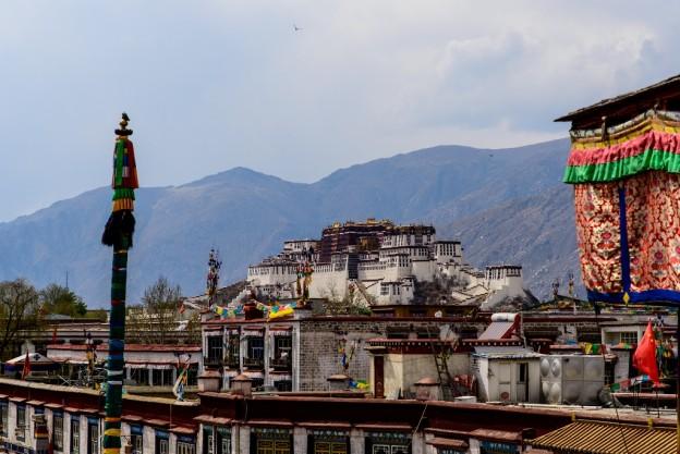 Tibet 3 (Potala view) 6