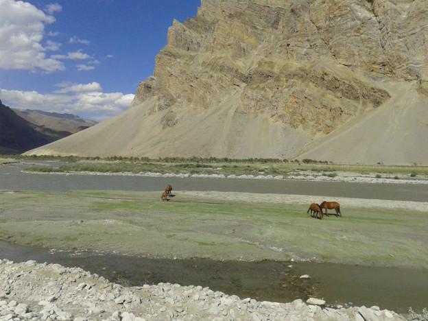 Vallee du Ladakh