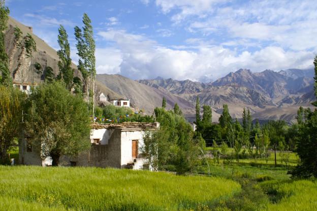 Atelier de medecine tibetaine au Ladakh