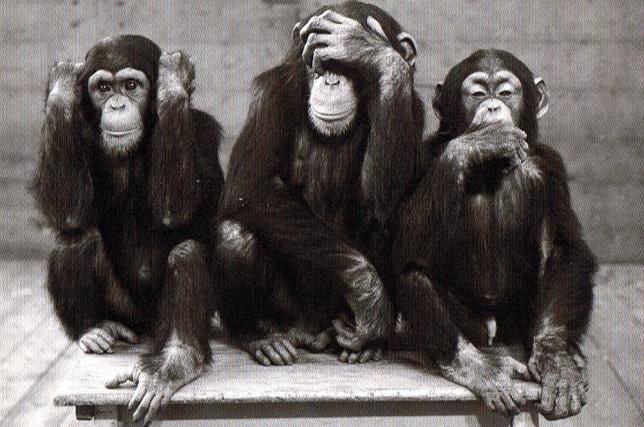 """Résultat de recherche d'images pour """"fable des 3 singes"""""""