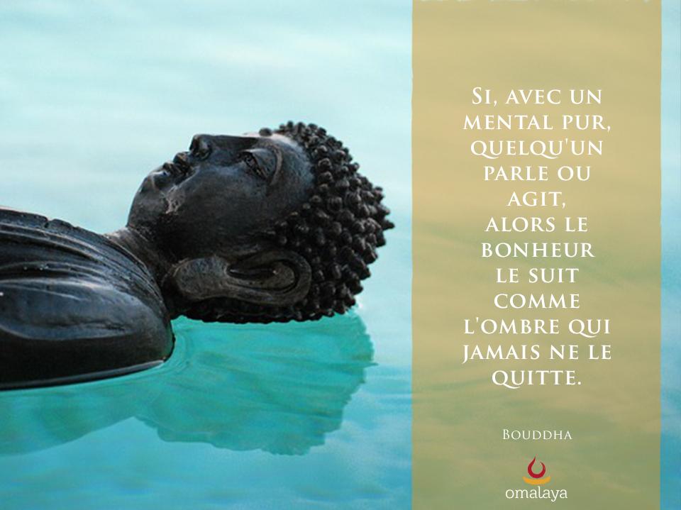 Gut gemocht S'inspirer pour s'éveiller : 30 citations de Bouddha | Omalaya PI24