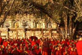Sur les pas du Bouddha