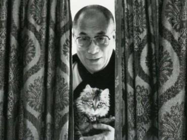 dalai lama chat
